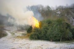 Kerstboom het branden Stock Afbeeldingen