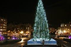 Kerstboom in het Vierkant Trafalgar Royalty-vrije Stock Foto
