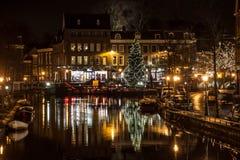Kerstboom in Leiden stock afbeelding