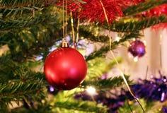 Kerstboom met een heldere rode decoratie Stock Afbeeldingen