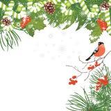 Kerstboom met klatergoud, suikergoedriet en lijsterbessentakken De kaart van de groet Royalty-vrije Stock Foto's
