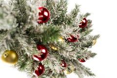 Kerstboom met Kleurrijke Ornamenten Royalty-vrije Stock Foto