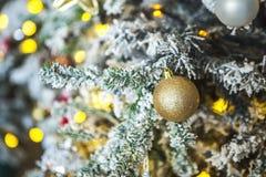 Kerstboom met rijp op spelden Stock Foto's