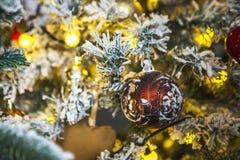 Kerstboom met rijp op spelden Royalty-vrije Stock Afbeelding