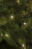 Kerstboom met witte lichten Stock Fotografie