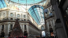 Kerstboom in Milaan, Italië Stock Afbeelding