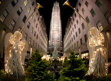Kerstboom, New York Stock Afbeelding