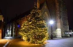 Kerstboom in Nieuwpoort, het Eiland Wight Stock Foto