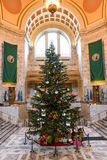 Kerstboom in Olympia Capitol Royalty-vrije Stock Foto