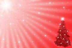 Kerstboom onder glanzende sterren in heldere zonnig Stock Afbeeldingen