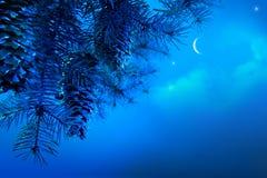 Kerstboom op een blauwe achtergrond van de nachthemel Stock Fotografie