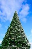 Kerstboom op een centraal vierkant van Kremenchug, de Oekraïne Stock Foto's