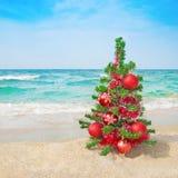 Kerstboom op het overzeese strand Stock Foto's