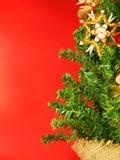 Kerstboom op rode achtergrond Royalty-vrije Stock Afbeeldingen