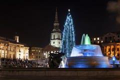 Kerstboom op Trafalgar Vierkant, Londen Stock Afbeelding