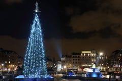 Kerstboom op Trafalgar Vierkant, Londen Stock Fotografie