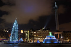Kerstboom op Trafalgar Vierkant, Londen Stock Foto's
