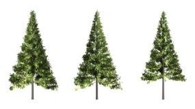 Kerstboom op witte achtergrond met het knippen van weg wordt geïsoleerd die royalty-vrije stock afbeeldingen
