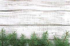Kerstboom op witte rustieke houten achtergrond met exemplaarruimte Stock Afbeeldingen
