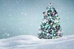 Kerstboom in openlucht achtergrond Royalty-vrije Stock Fotografie