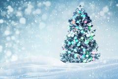 Kerstboom in openlucht achtergrond Stock Fotografie