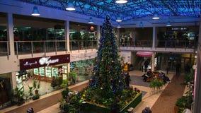 Kerstboom in opslag stock video