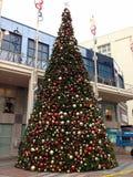Kerstboom, Seattle de stad in, winkelcomplex Royalty-vrije Stock Foto