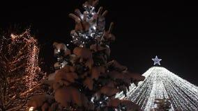 Kerstboom - sneeuw bij spar en lichten het opvlammen stock footage
