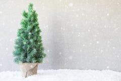Kerstboom, Sneeuw, Exemplaarruimte, Sneeuwvlokken Stock Foto