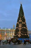 Kerstboom in St. Petersburg, Rusland Stock Foto