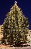 Kerstboom in stad Stock Foto's