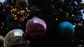 Kerstboom in Straat, Woensdag, 13 December, 2017 Royalty-vrije Stock Afbeeldingen