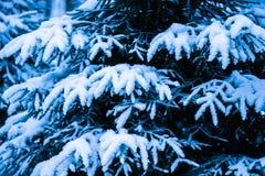 Kerstboom 6 van de de wintersneeuw Stock Afbeeldingen