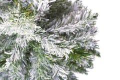 Kerstboom zonder speelgoed Royalty-vrije Stock Afbeeldingen