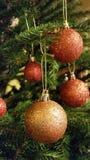 Kerstboombal Royalty-vrije Stock Foto
