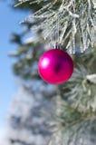 Kerstboomdecoratie op een pijnboom Stock Foto