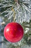 Kerstboomdecoratie op een pijnboom Royalty-vrije Stock Foto's