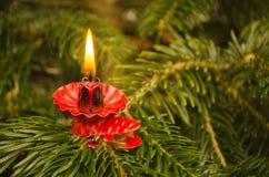 Kerstboomkaars Royalty-vrije Stock Fotografie