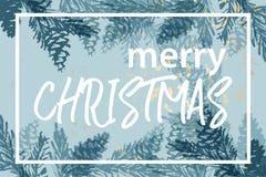 Kerstboomkegel die vector de wintertexturen schilderen royalty-vrije stock fotografie
