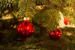 Kerstboomsnuisterijen Royalty-vrije Stock Fotografie