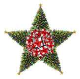 Kerstboomster Royalty-vrije Stock Fotografie
