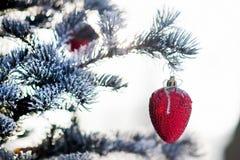 Kerstboomtak met Kerstmisbal in vorm van aardbei Royalty-vrije Stock Foto's