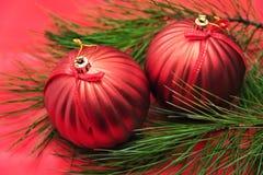 Kerstboomtak met rode snuisterijen Royalty-vrije Stock Foto's