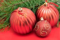 Kerstboomtak met rode snuisterijen Stock Fotografie