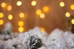 Kerstboomtak onder sneeuw op een achtergrond van lichten Stock Fotografie