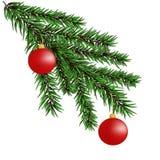 Kerstboomtakken stock fotografie