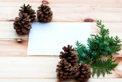 Kerstkaart met denneappels en nette takken Royalty-vrije Stock Afbeeldingen