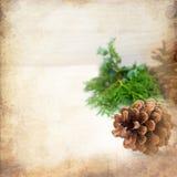Kerstkaart met denneappels en nette takken Stock Foto's