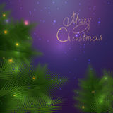 Kerstkaart met takken Stock Foto's