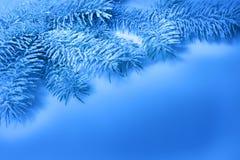 Kerstkaart, tak in de sneeuw Royalty-vrije Stock Afbeeldingen